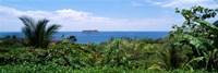 Manuel Antonia National Park nr Quepos Costa Rica Fine Art Print