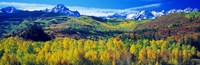 San Juan Mountains, Colorado, USA Fine Art Print