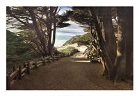 Big Sur Fine Art Print