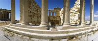Ruins of a temple, Parthenon, The Acropolis, Athens, Greece Fine Art Print