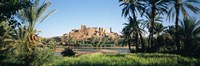 Palm trees with a fortress in the background, Tiffoultoute, Ouarzazate, Marrakesh, Morocco Fine Art Print
