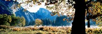Half Dome, Yosemite National Park, California, USA Fine Art Print