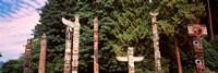 Totem poles in a park, Stanley Park, Vancouver, British Columbia, Canada Fine Art Print