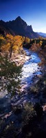 High angle view of a river flowing through a forest, Virgin River, Zion National Park, Utah, USA Fine Art Print
