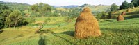 Farm, Transylvania, Romania Fine Art Print