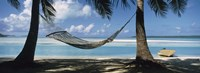 Hammock on the beach, Cook Islands South Pacific Framed Print