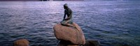 Little Mermaid Statue on Waterfront Copenhagen Denmark Fine Art Print