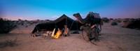 Bedouin Camp, Tunisia, Africa Fine Art Print