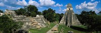 Ruins Of An Old Temple, Tikal, Guatemala Fine Art Print