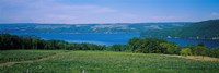 High angle view of a vineyard near a lake, Keuka Lake, Finger Lakes, New York State, USA Fine Art Print