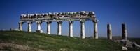 Columns on a landscape, Apamea, Syria Fine Art Print
