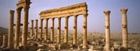 Ruins in Palmyra, Syria Fine Art Print