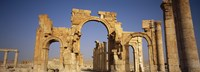 Old Stone Ruins in Palmyra, Syria Fine Art Print