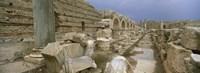 Ruins of ancient Roman city, Leptis Magna, Libya Fine Art Print