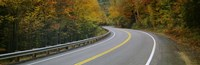 Road passing through a forest, Winding Road, New Hampshire, USA Fine Art Print