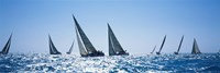 Sailboats racing in the sea, Farr 40's race during Key West Race Week, Key West Florida, 2000 Fine Art Print