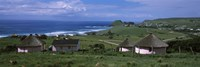 Thatched Rondawel huts, Hole in the Wall, Coffee Bay, Transkei, Wild Coast, Eastern Cape Province, Republic of South Africa Fine Art Print