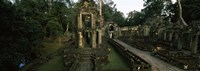 Preah Khan, Angkor, Cambodia Fine Art Print
