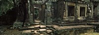 Ruins of a temple, Banteay Kdei, Angkor, Cambodia Fine Art Print