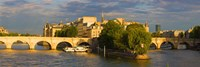 Arch bridge over a river, Pont Neuf, Seine River, Isle de la Cite, Paris, Ile-de-France, France Fine Art Print