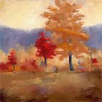 Fall Splendor II Fine Art Print