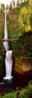 Footbridge in front of a waterfall, Multnomah Falls, Columbia River Gorge, Multnomah County, Oregon Fine Art Print