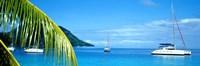 Sailboats in the ocean, Tahiti, Society Islands, French Polynesia (horizontal) Fine Art Print