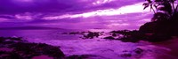 Purple Sunset over the coast, Makena Beach, Maui, Hawaii Fine Art Print