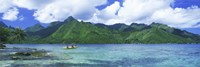 Polynesian people rowing a yellow outrigger boat in the bay, Opunohu Bay, Moorea, Tahiti, French Polynesia Fine Art Print