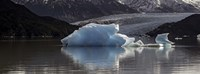 Iceberg in a lake, Gray Glacier, Torres del Paine National Park, Magallanes Region, Patagonia, Chile, Lake Fine Art Print