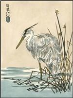 Oriental Crane I Fine Art Print