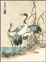 Oriental Crane II Fine Art Print