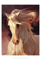Blanco Fine Art Print