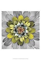 Fractal Blooms IV Fine Art Print