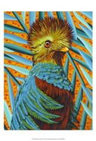 Bird in the Tropics I Fine Art Print