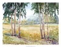 Luminous Meadow II Framed Print