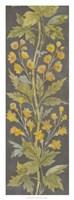 June Floral Panel II Framed Print