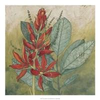 Crimson Tropical I Framed Print