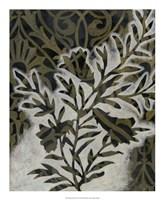 Pattern Bloom II Framed Print