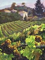 Siena Harvest Fine Art Print