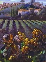 View of Tuscany Fine Art Print