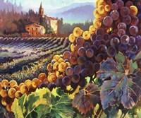 Tuscany Harvest Framed Print