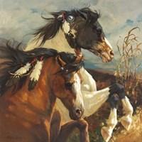 Wind Voyager Fine Art Print