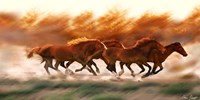 Blazing Herd II Fine Art Print