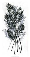 Palm Leaf Fresco I Framed Print