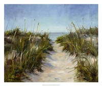 Seagrass and Sand Fine Art Print
