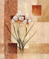 Delicate flowers I Fine Art Print