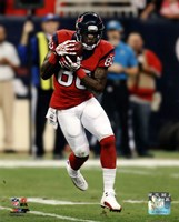 Andre Johnson 2013 Action Fine Art Print