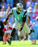 Cam Newton 2013 Action Fine Art Print