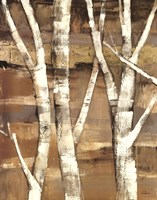 Wandering Through the Birches I Fine Art Print